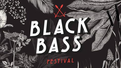 Pour la deuxième fois, le Black Bass Festival a fait vibrer les marais de Haute Gironde