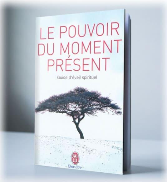 Livre revolution guide spirituel Aurelien Essertel