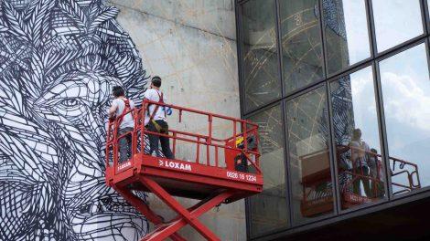 Un mur XXL pour les Monkeybird Veronique Berge Jugeote