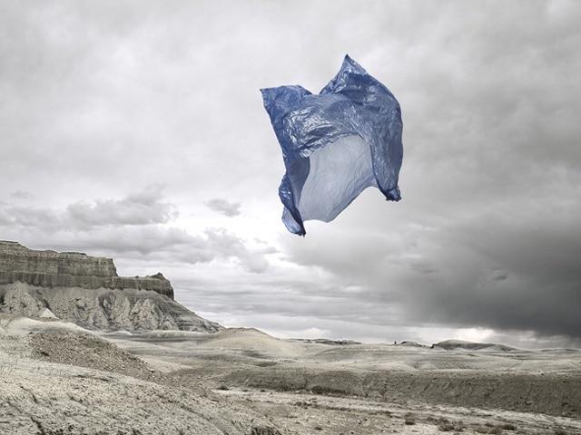 Une photo pour dénoncer les méfaits du plastique