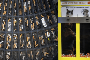 Bordeaux, la ville qui ne mégote pas aved les clopes et invent le cat & dog vote avec ses mégots