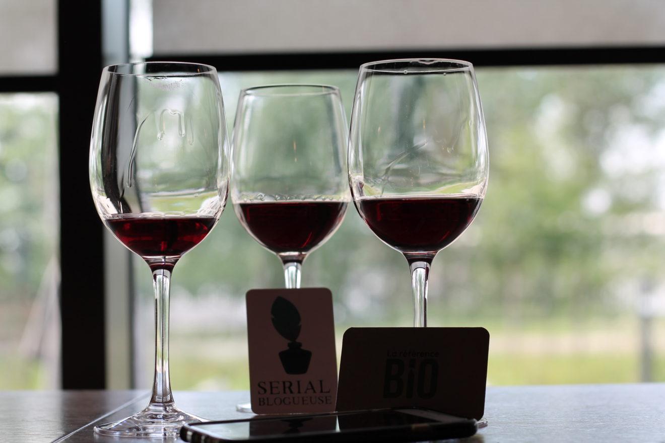Serial Blogueuse à la cité du vin