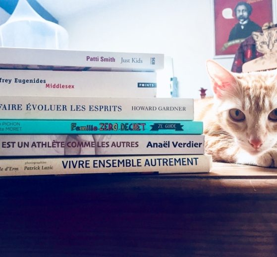 Serial blogueuse cat books addict