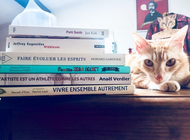 Serial blogueuse cat books addict