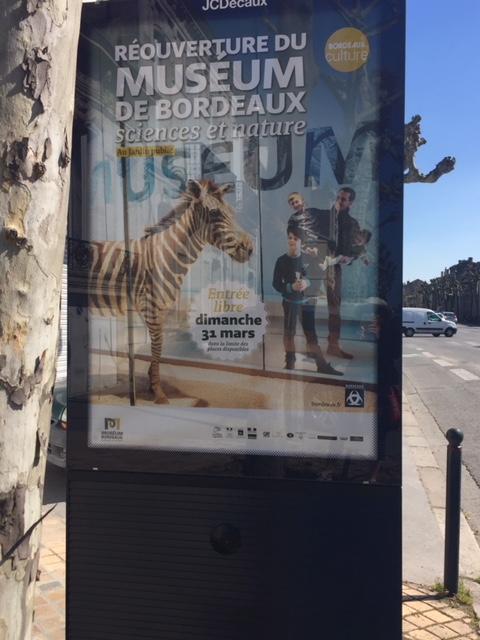 Réouverture du Musée d'histoire naturelle de Bordeaux pour une sortie en famille