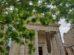 Le Temple des Chartrons reprend vie grâce au street art