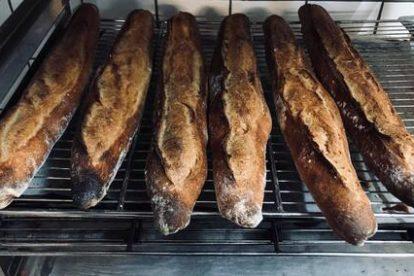 Du pain au levain d'épeautre