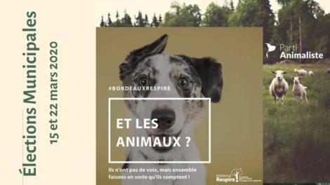 La Cause animale, un thème de campagne
