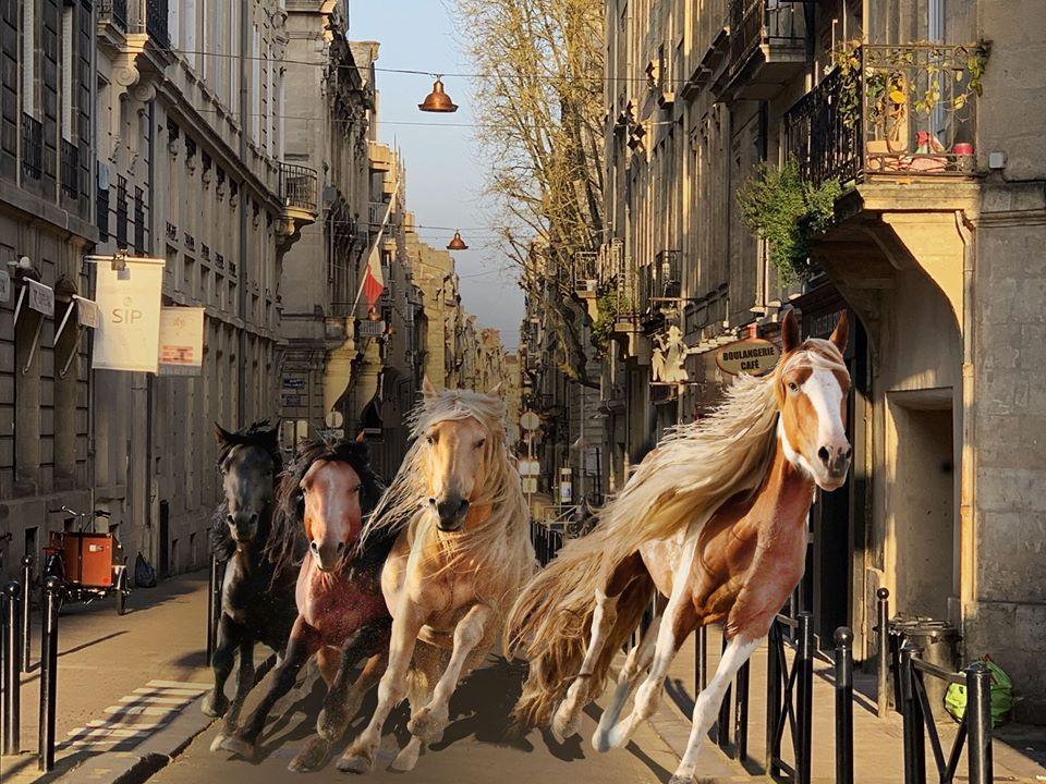La chevauchée fantastique à Bordeaux