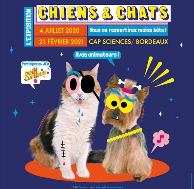 Affiche de l'expo Chiens & Chats