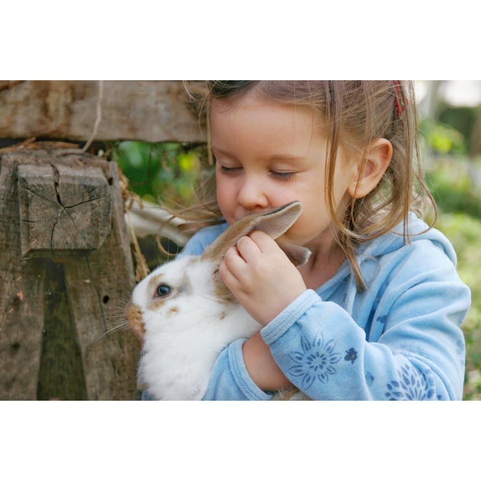 Sensibilisation à la condition animale auprès des enfants