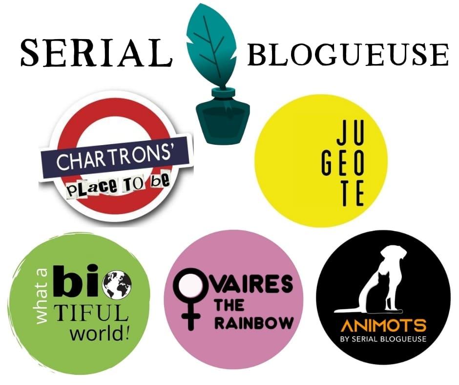 Ma pyramide des logos de Serial blogueuse