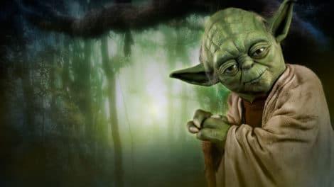 Les-10-conseils-bio-de-Maître-Yoda