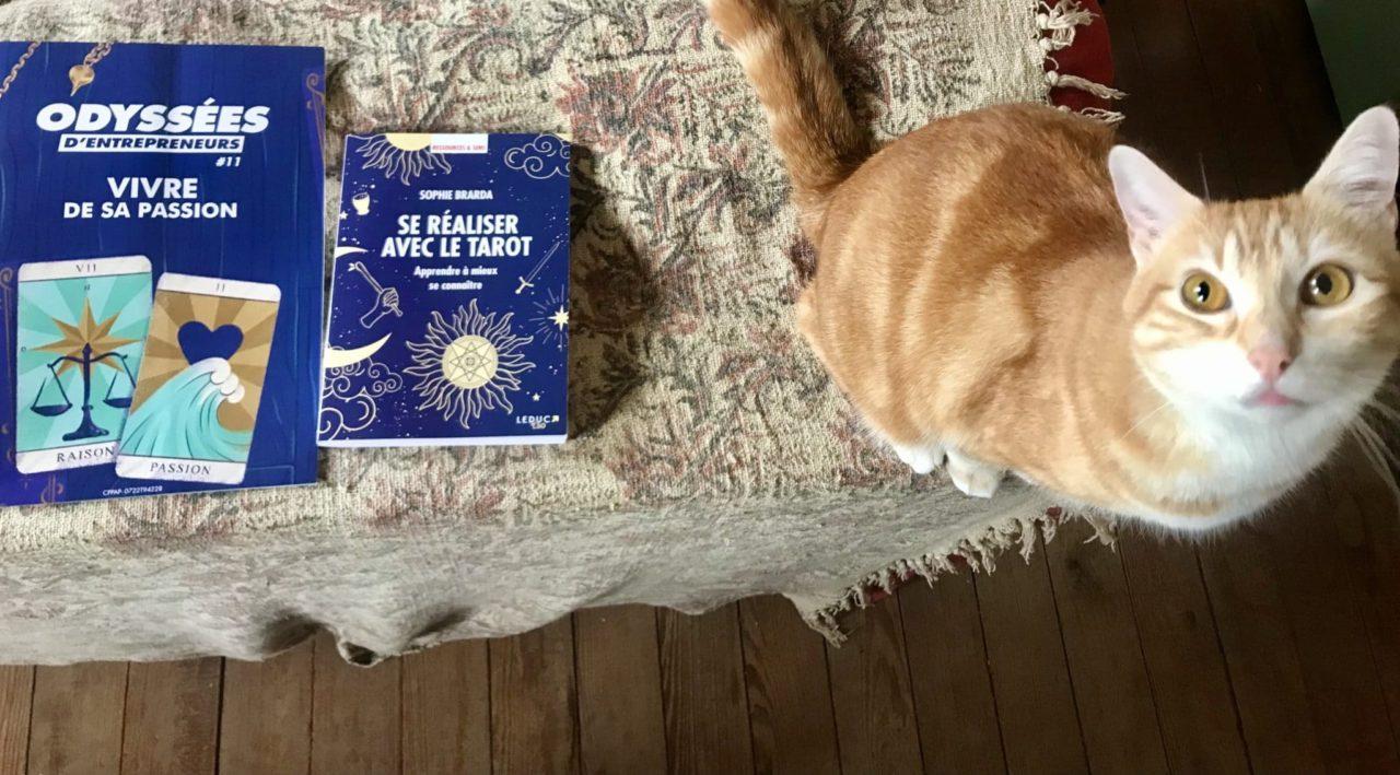 Se réaliser avec le Tarot le livre de Sophie Brarda et vivre de sa passion, chat alors !