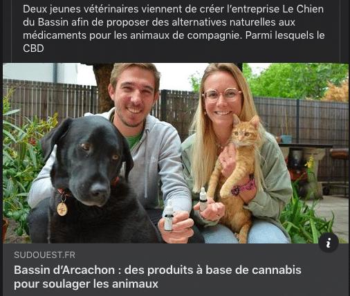 Du CBD pour les animaux